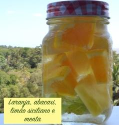 laranja_limao_abacaxi_menta_gengibre